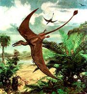 Получены новые данные, опровергающие гипотезу о происхождении птиц от динозавров